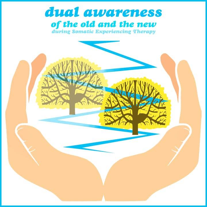 dual awareness during somatic experiencing