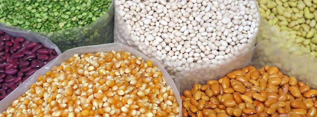 corn, beans, lentils