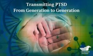 Transmitting PTSD From Generation to Generation