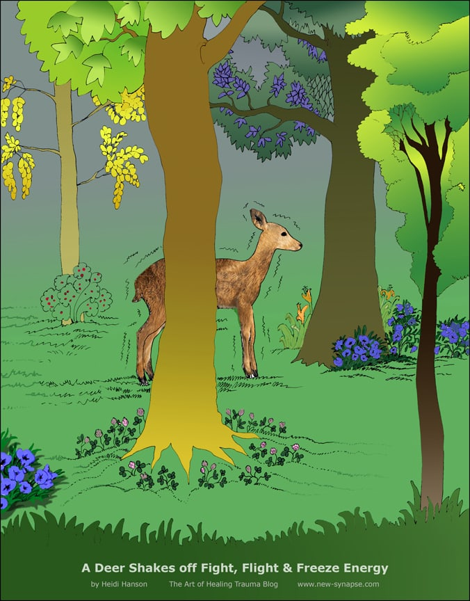 A deer shakes in the middle of a beautiful forest clearing