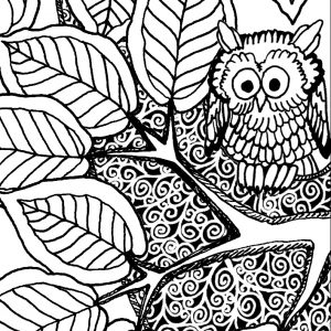 Drink Something Cold Grounding Activity Coloring Book Page detail of owl in tree