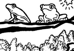 Opening up to Goodness and Allowing Emotions Coloring Page frogs detail